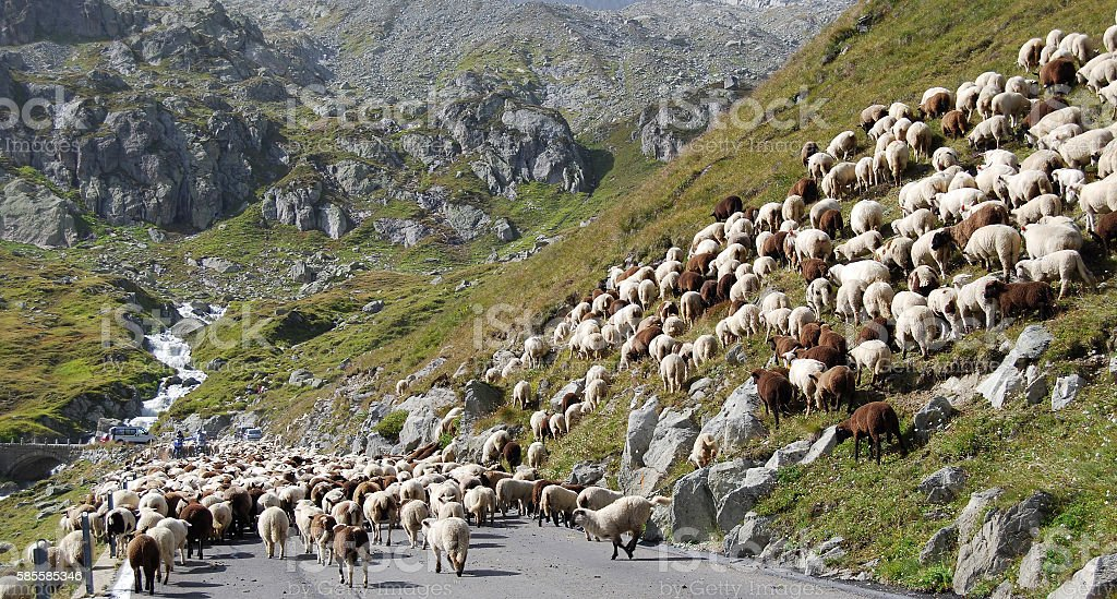 Traffic congestion on the Furka Pass (Switzerland) stock photo