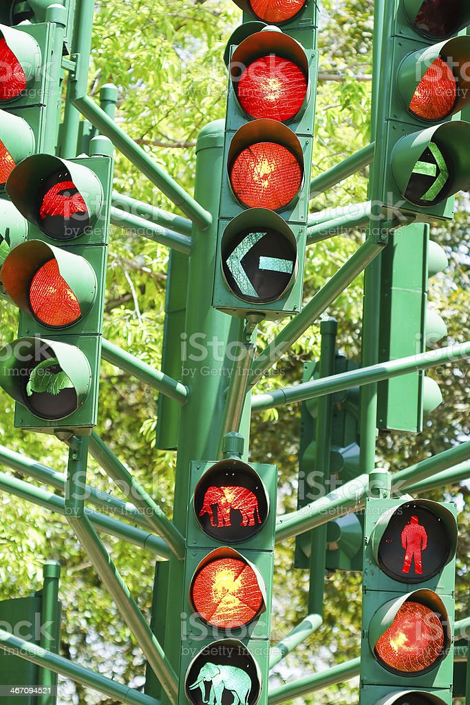 traffic light in all combinations. royalty-free stock photo