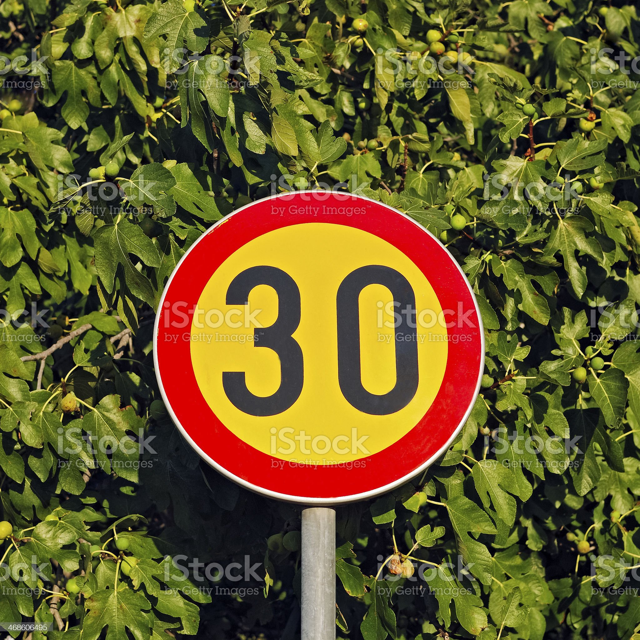 Traffic sign 30 km / h zone royalty-free stock photo