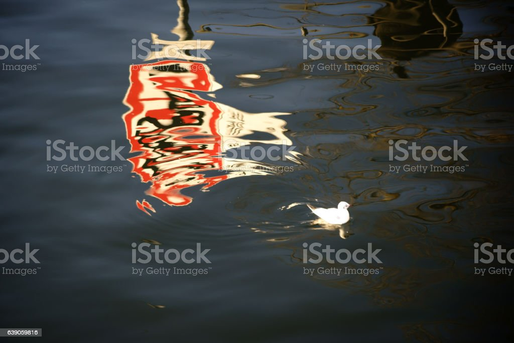 Traffic sign reflection in the river stock photo
