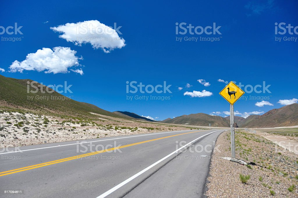 Traffic sign : Watch for  VIcunas!!, Bolivia stock photo