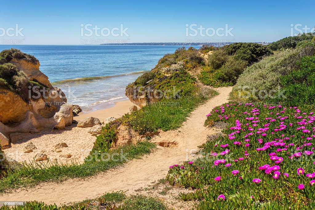 Trail and the spring landscape Albufeira beaches. stock photo