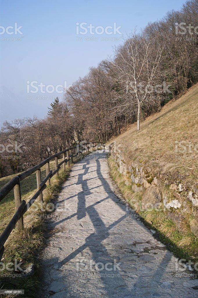 Trail and wooden fence stock photo