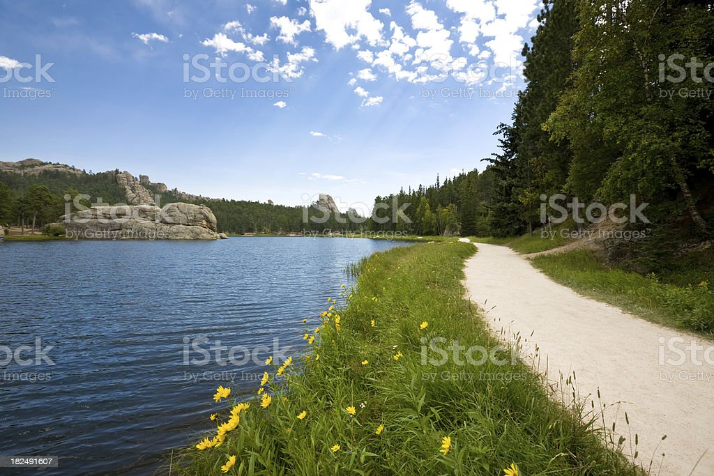 Trail around a lake; Black Hills South Dakota royalty-free stock photo