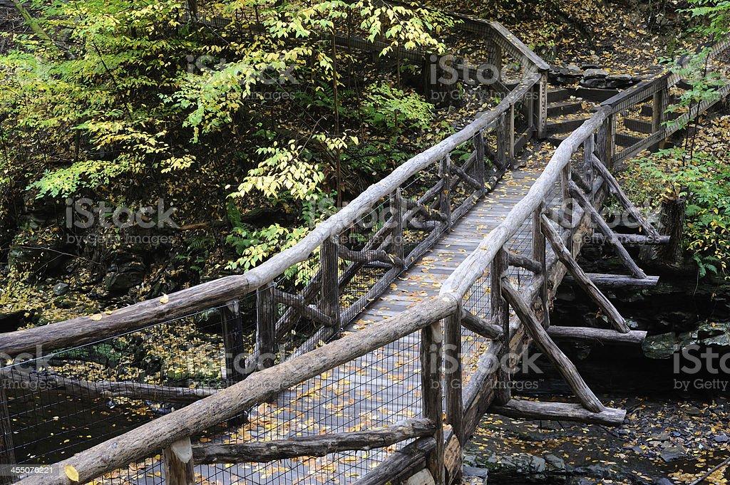 Trail Bridge at Delaware Water Gap NRA stock photo