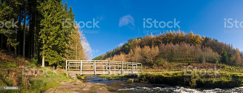 Trail bridge mountain stream royalty-free stock photo