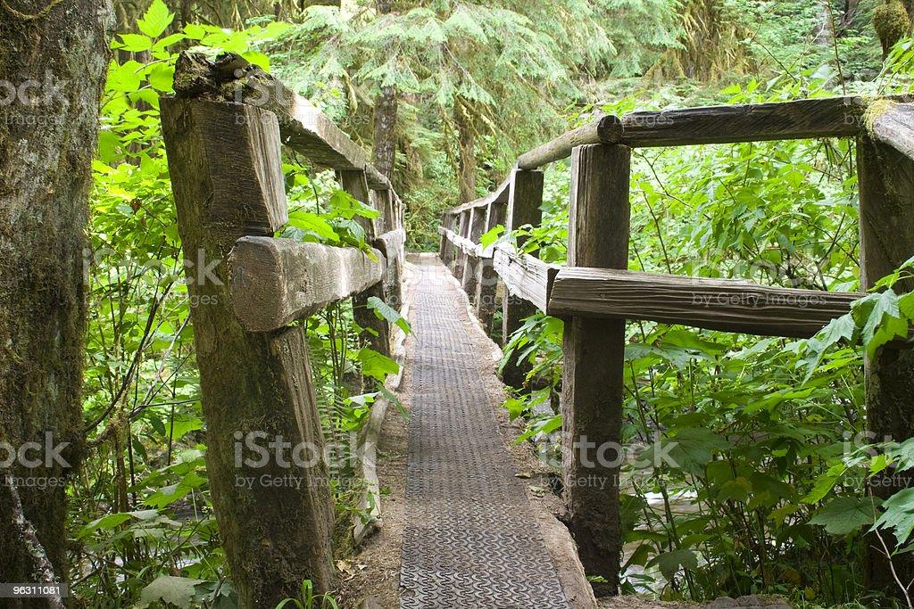 Trail Bridge royalty-free stock photo