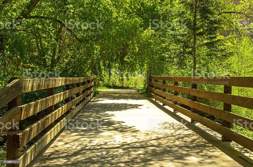 Trail Footbridge in Spring stock photo