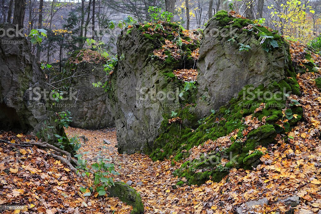 Trail in Escarpment stock photo