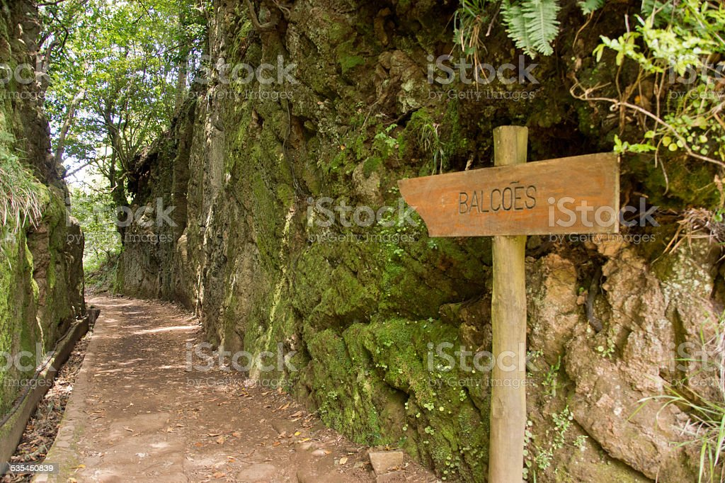 Trail in Madeira, Portugal stock photo
