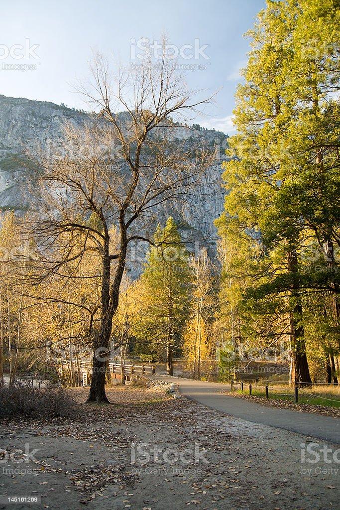 Trail in Yosemite royalty-free stock photo