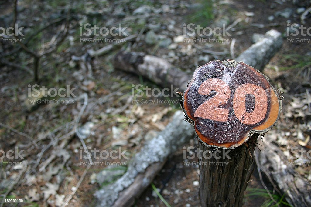 Trail Marker 20 stock photo