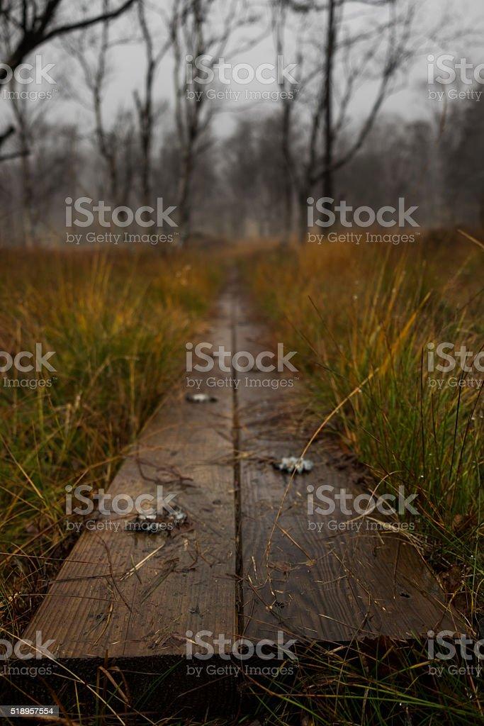Trail path stock photo