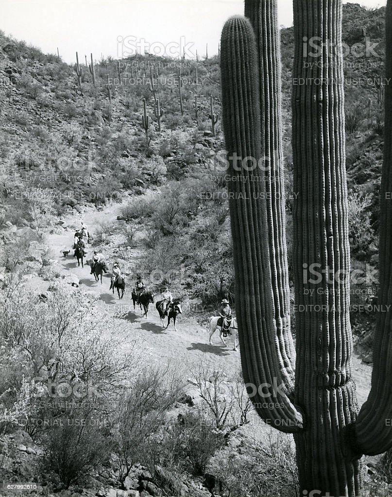 trail ride in Sonoran Desert 1943 stock photo