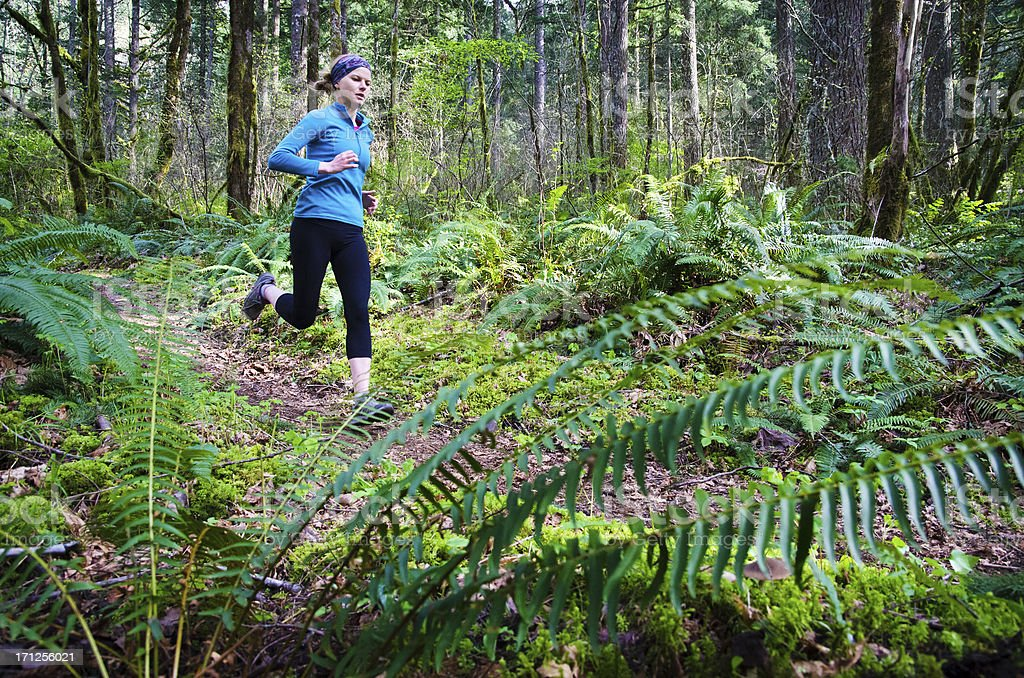 Trail runner in forest royalty-free stock photo
