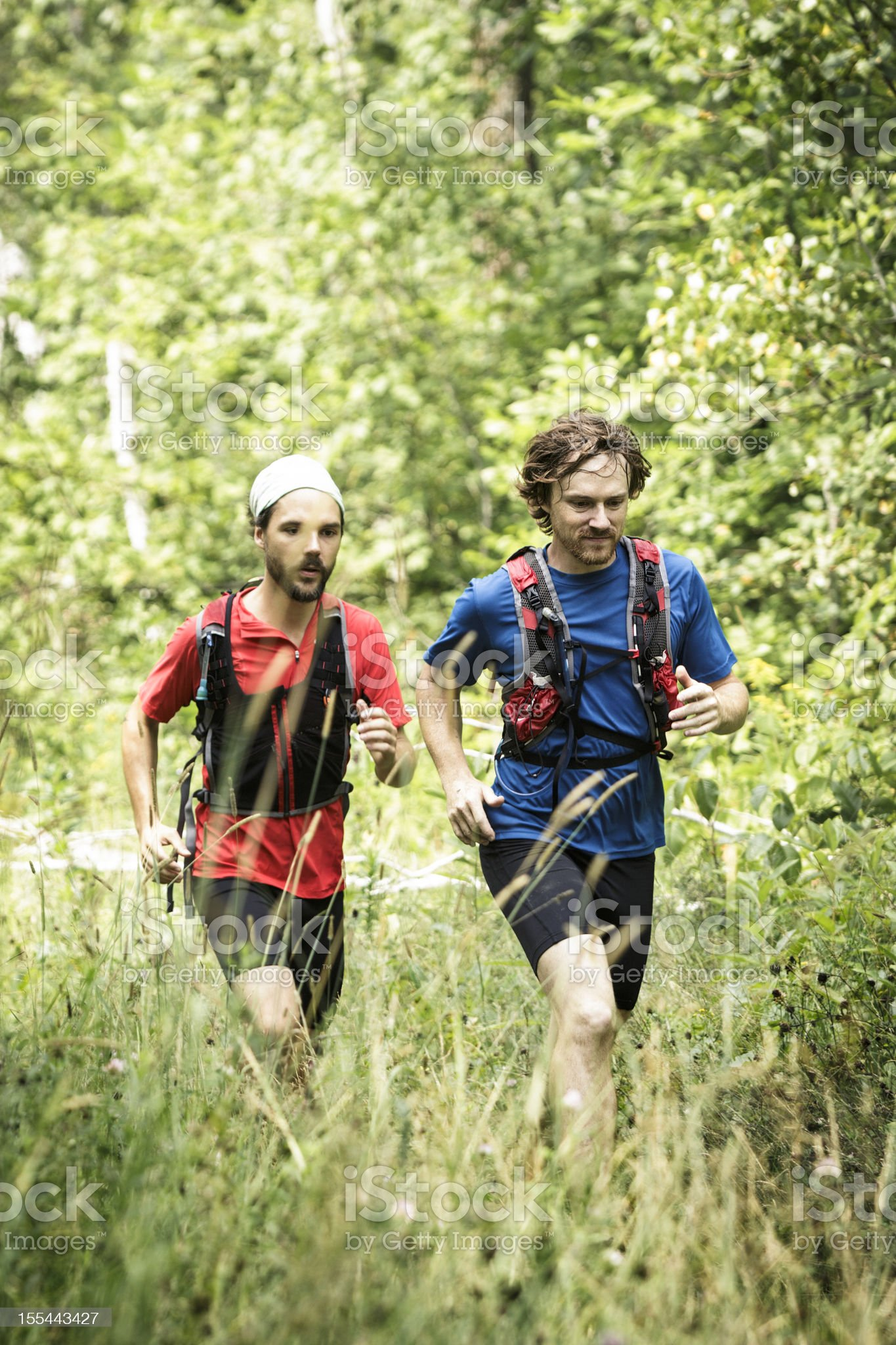 Trail runners training royalty-free stock photo