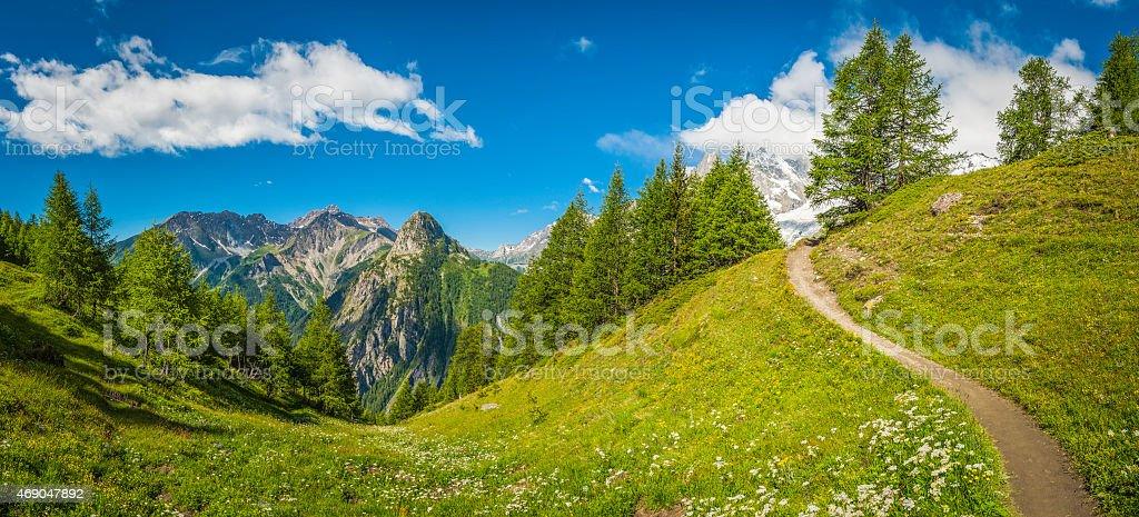 Trail through idyllic wildflower mountain meadow summer Alpine peaks panorama stock photo