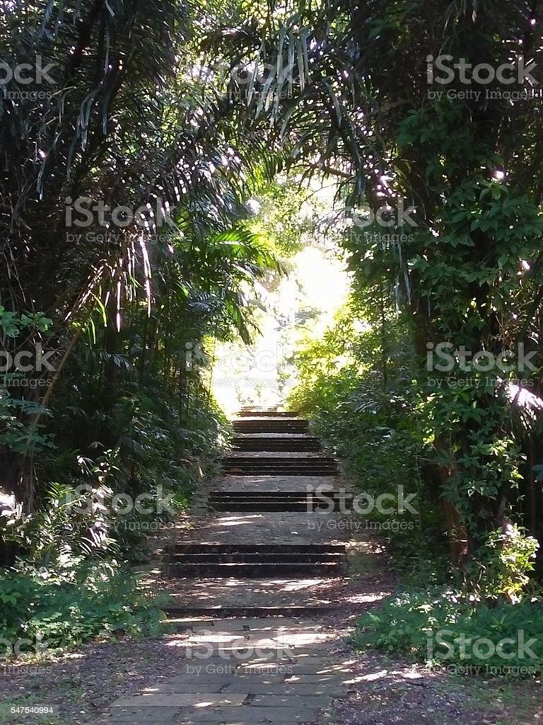 Trail to nowhere stock photo
