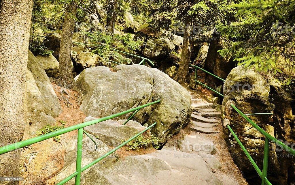 Trail den Tisch-Gebirge Lizenzfreies stock-foto