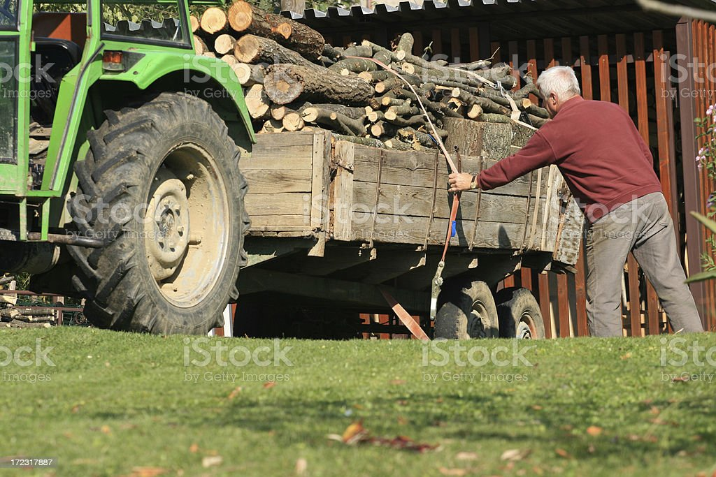 Trailer full of firewood royalty-free stock photo