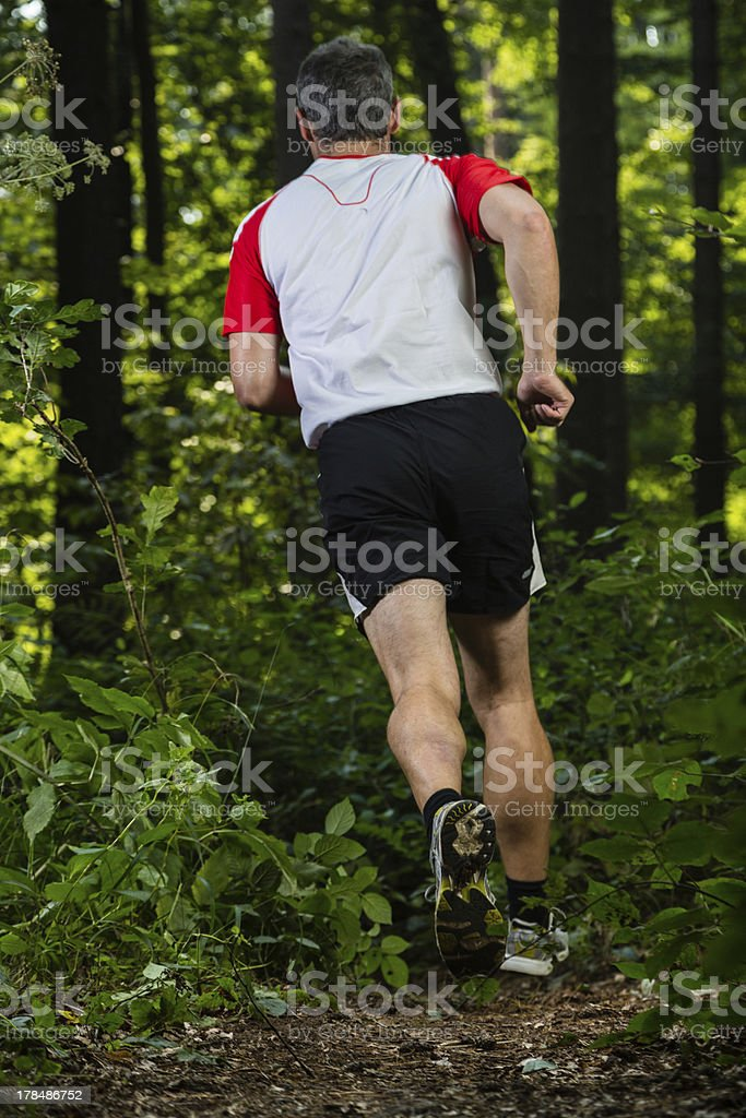 trailrunner in the forest royalty-free stock photo