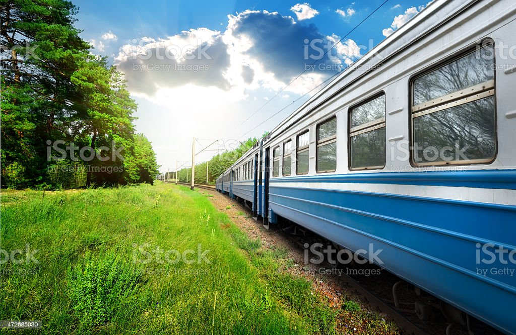 Train and pine forest stock photo