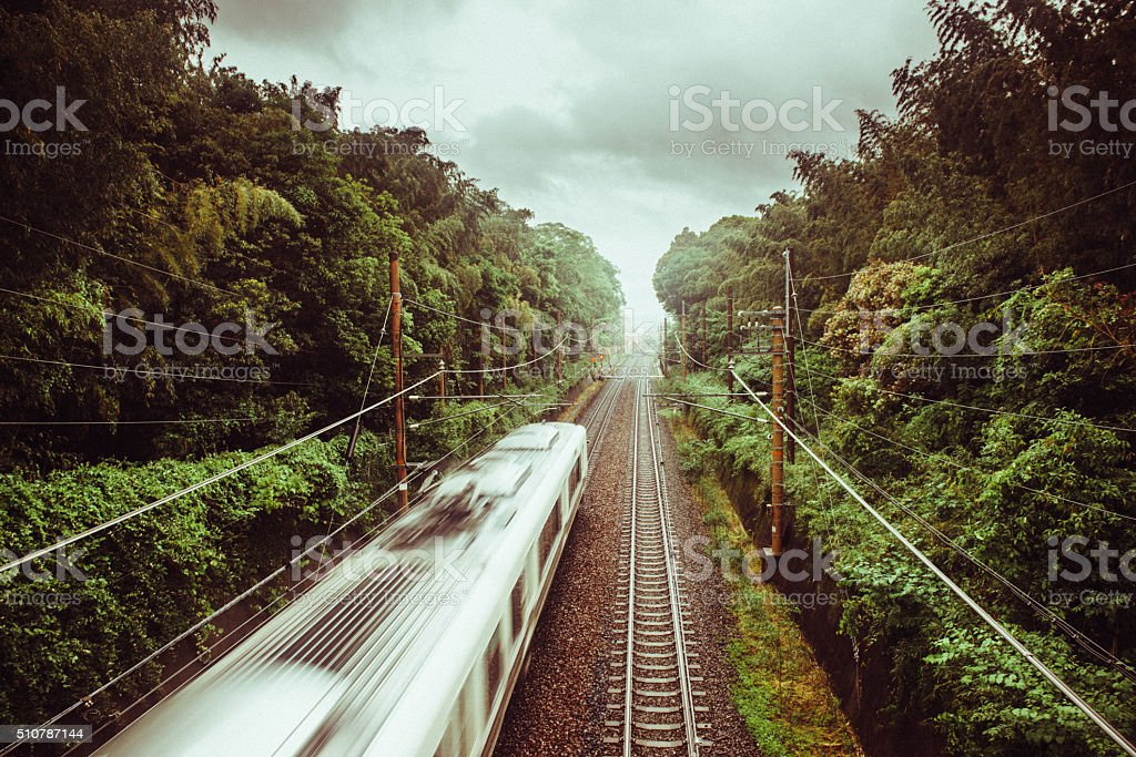 Train Crossing Kyoto Bamboo Forest stock photo