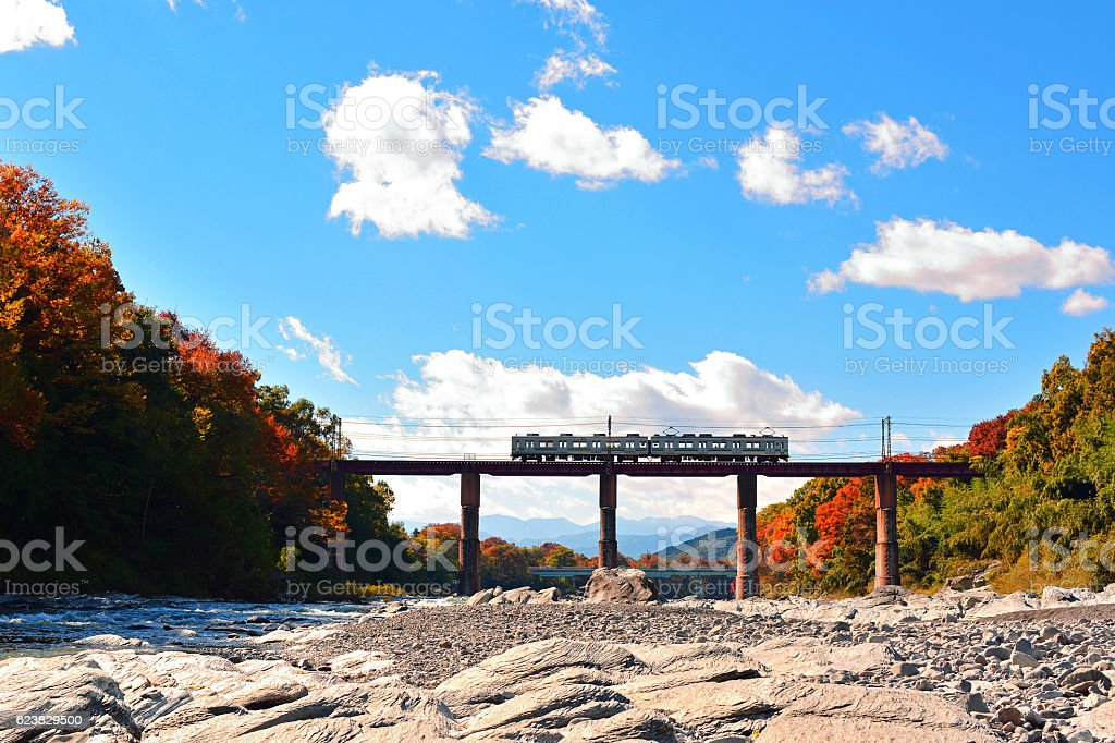 Train crossing the bridge. stock photo