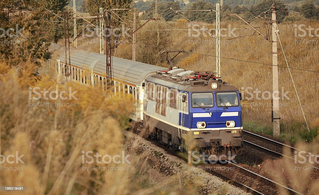train in meadows royalty-free stock photo