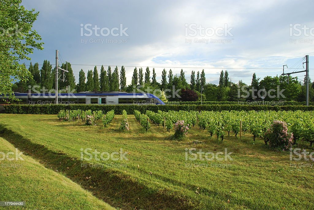Train in motion through green scenery, France, Europe royalty-free stock photo