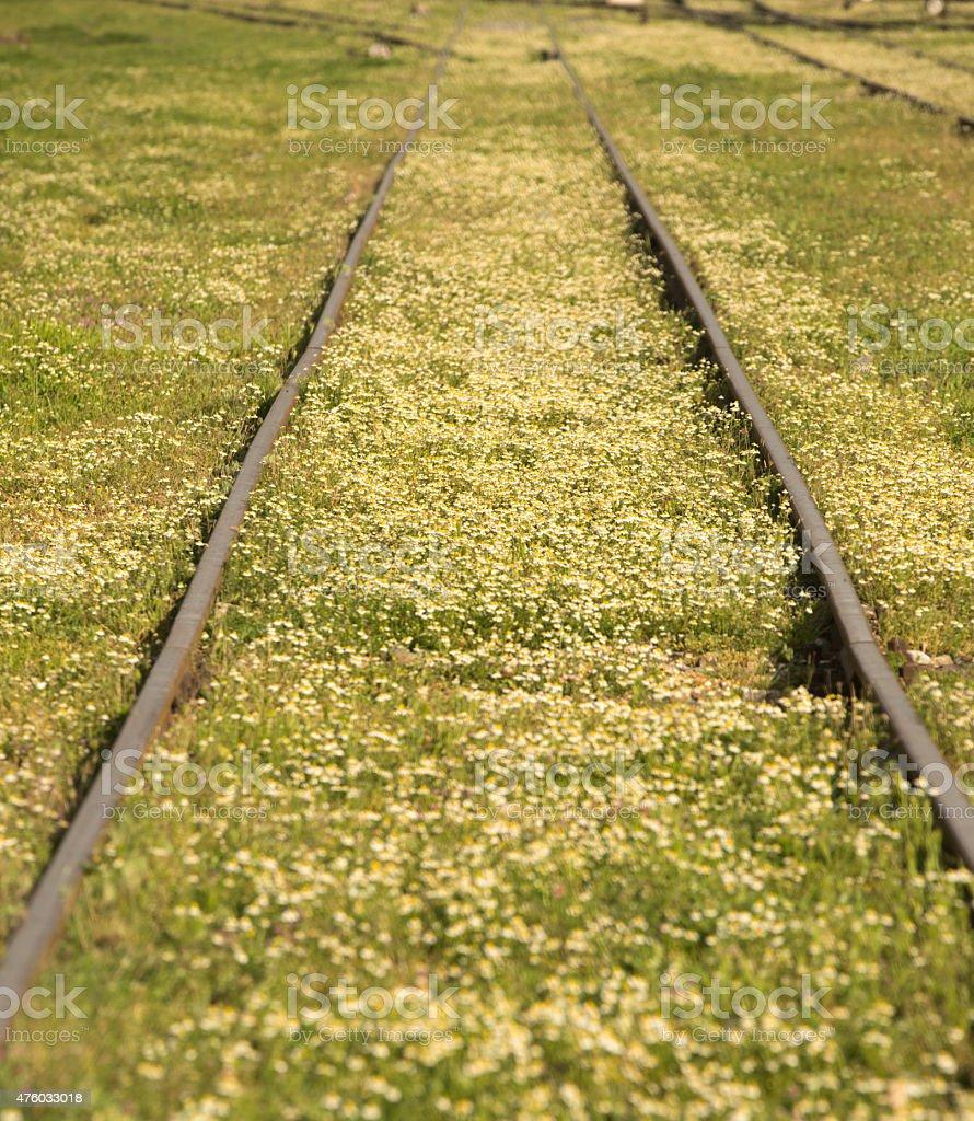 train line stock photo