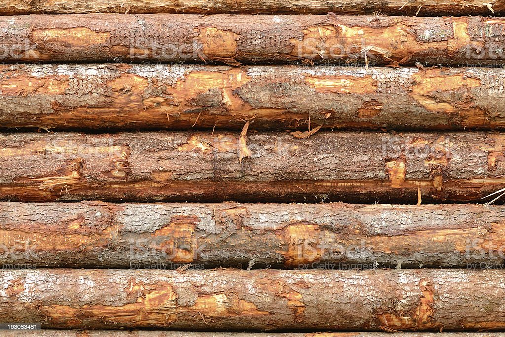 Train Logs royalty-free stock photo