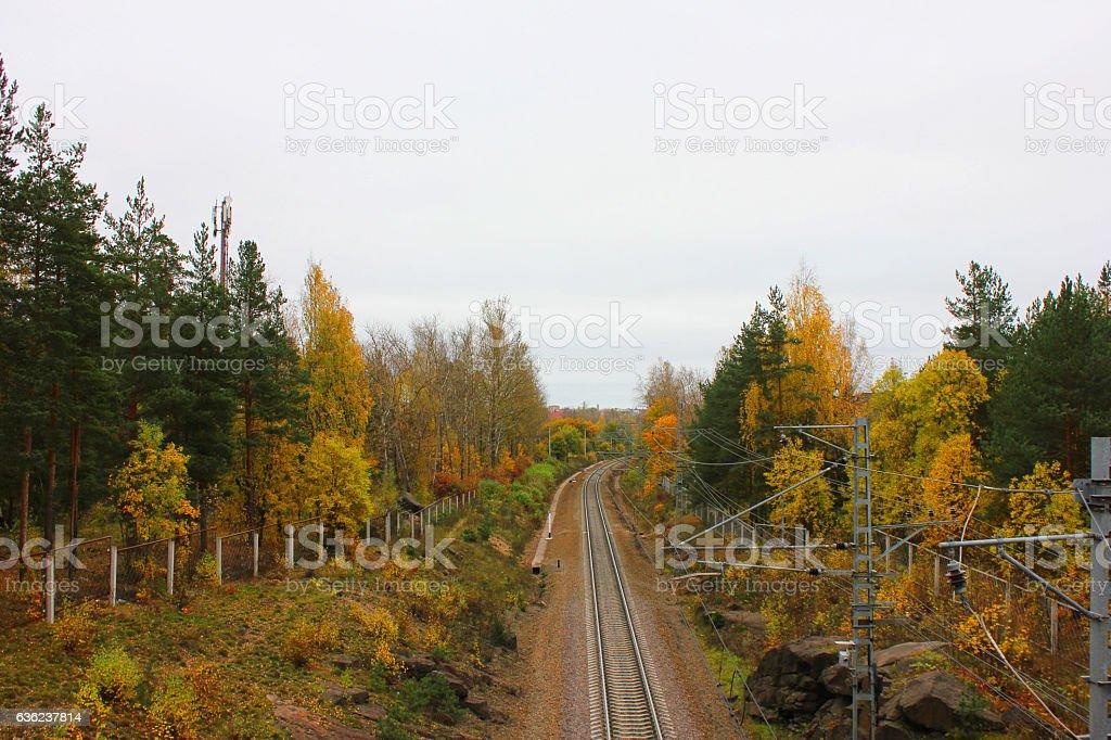 Train railtrack pathway colorful autumn fall landscape stock photo