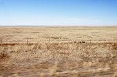 Train ride through the Mongolian steppe