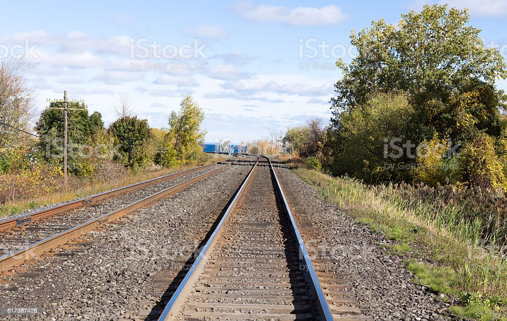 Train tracks edged by trees. royalty-free stock photo