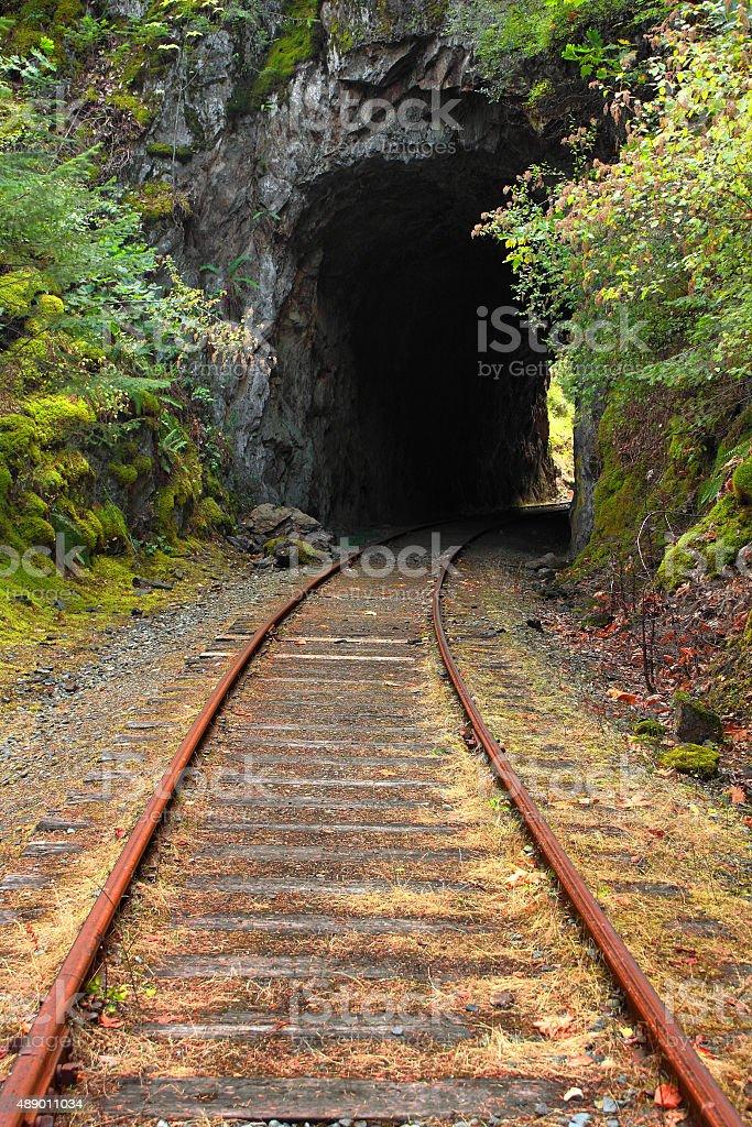 Train Tunnel stock photo