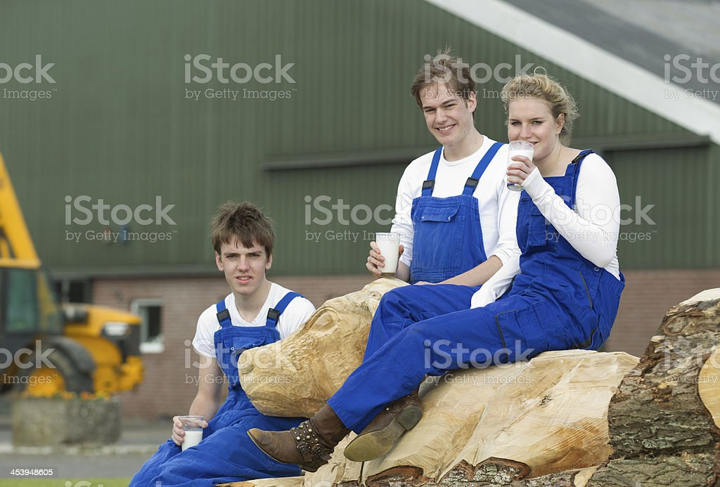 Trainees Drinking Milk While Sitting On Wooded Cow Structure royalty-free stock photo