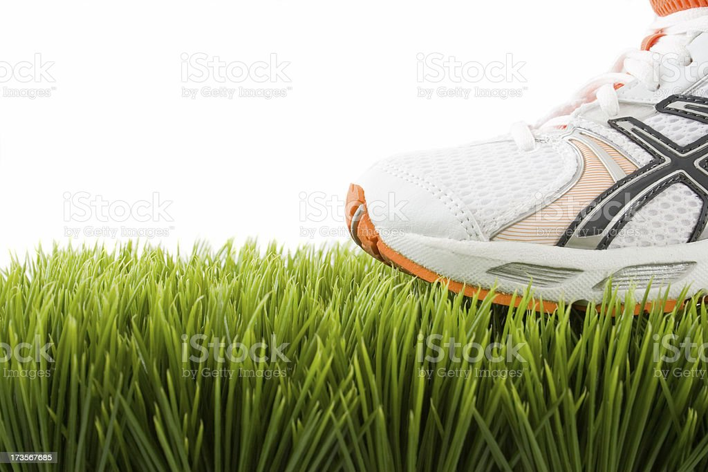 Trainer on Grass royalty-free stock photo