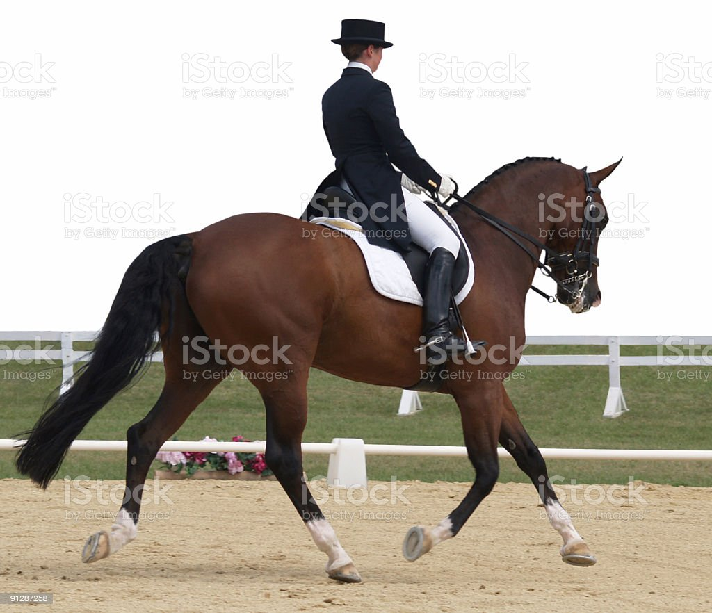 Trainer practicing a dressage test stock photo