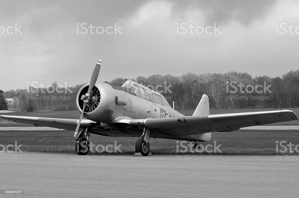 Trainer Under a Threatening Sky, Black and White royalty-free stock photo