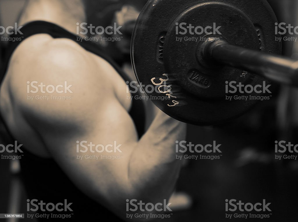 training barbell gym strength stock photo