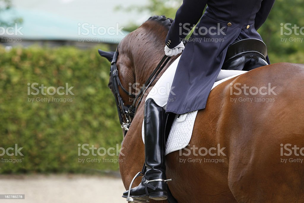 Dressage stock photo