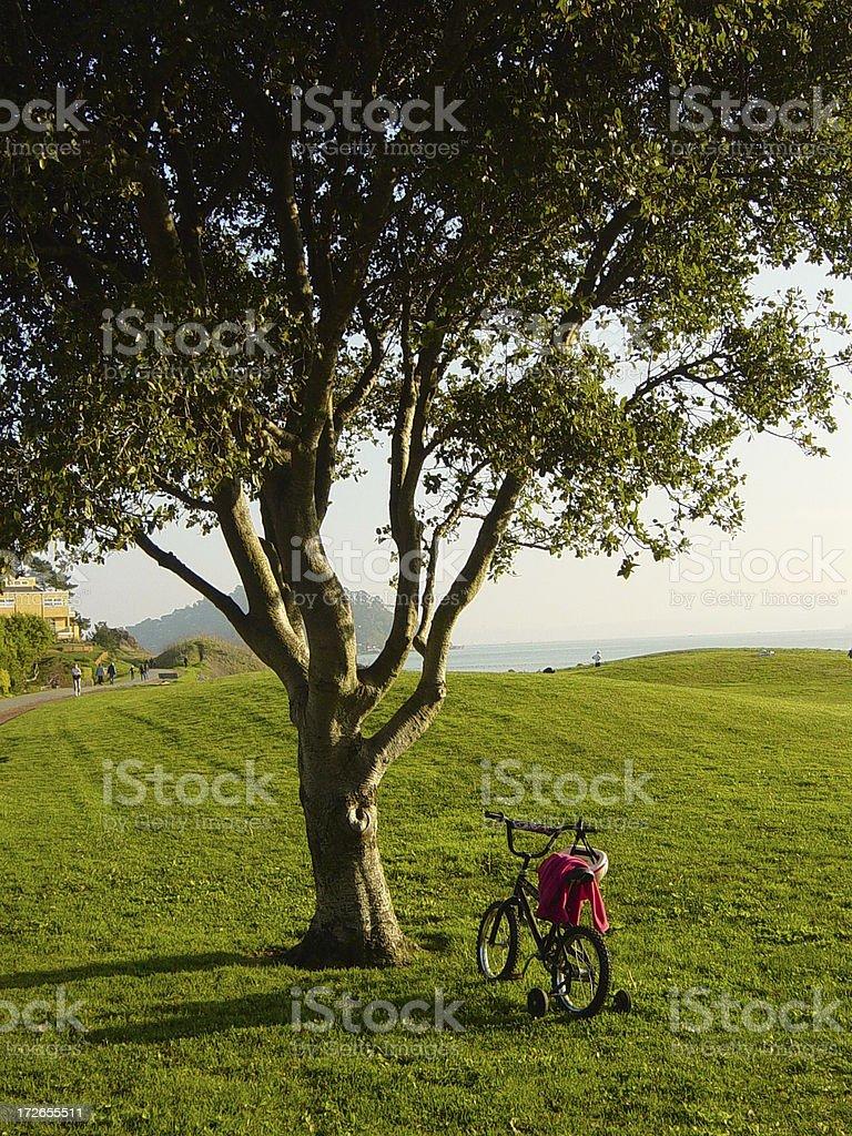 Roue stabilisatrice sur un vélo à proximité de magnifique arbres photo libre de droits
