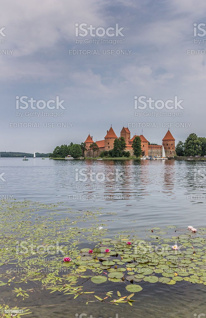 Trakai red brick castle with a water lilies in front stock photo