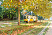 Tram in perspective from Milan. Autumn season.