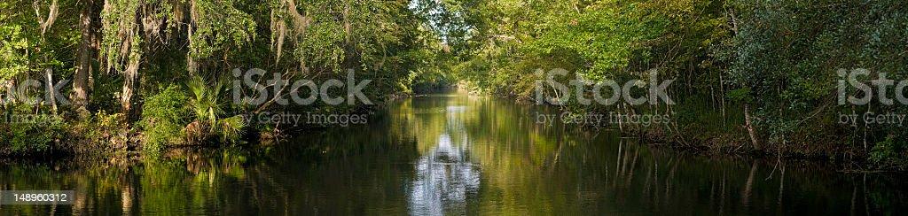 Tranquil bayou backwater stock photo