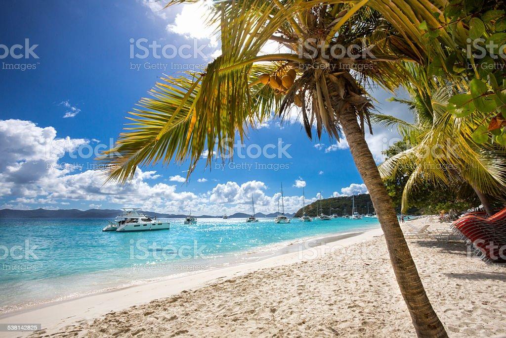 Tranquil Beach stock photo