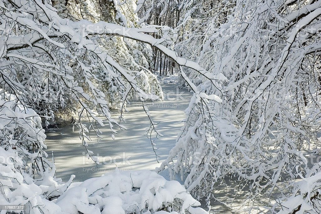 Tranquil frozen snowy stream royalty-free stock photo