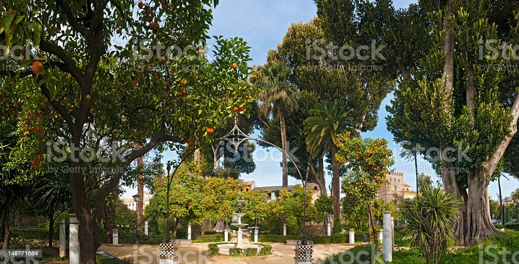 Tranquil gardens orange trees fountains Jardines Murillo Andalusia Seville Spain royalty-free stock photo
