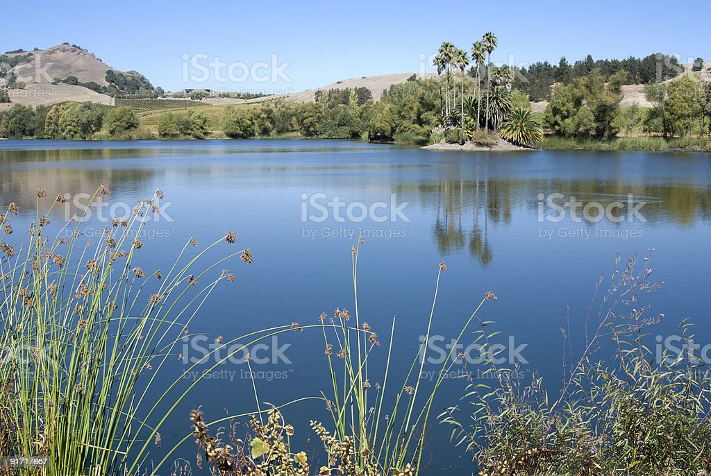 Tranquil lake in California stock photo